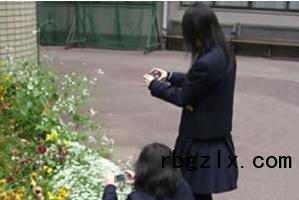 相爱学园中学俱乐部活动(摄影)