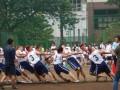 工学院大学附属高中体育祭