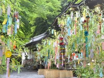 日本的七夕节 实现愿望的节日
