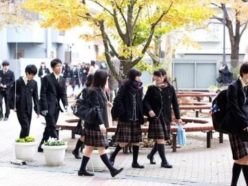 高中、大学、研究生,各阶段赴日留学有什么条件?