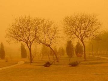 30日北海道和东北地区因为沙尘暴交通可能受到影响